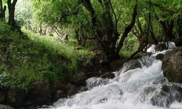دره نی گاه رود سفید آب